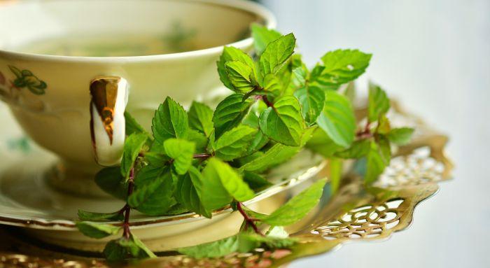 ceasca cu ceai verde si frunze de menta proaspata