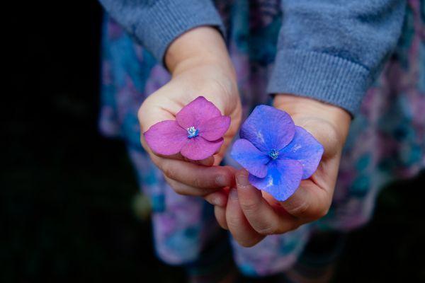 copil care tine in mana doua floricele