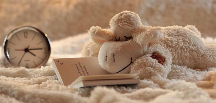 jucarie de plus intinsa pe un pat pe o patura groasa langa o carte deschisa