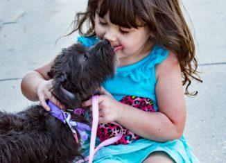 Când copilul chinuie câinele, părinții trebuie să intervină prompt