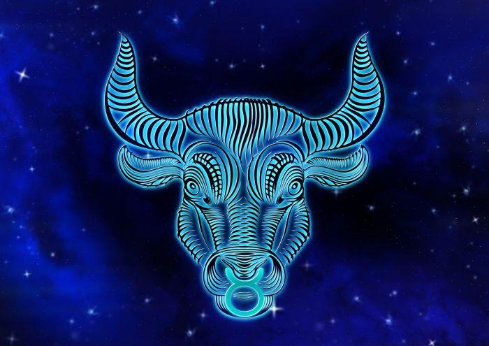 Horoscopul vinului spune că taurii preferă vinurile durabile
